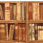 un anno di libri